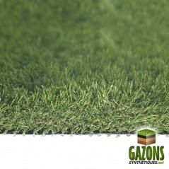 azur grass