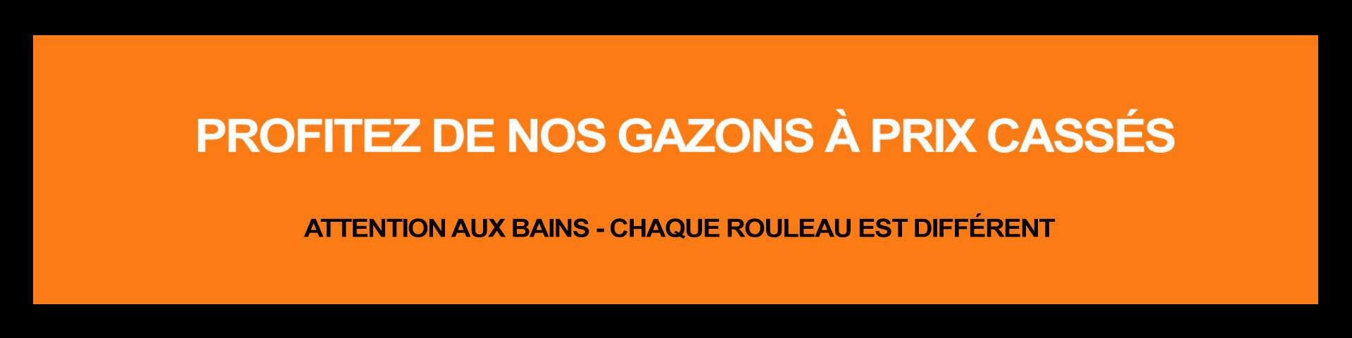 Promos du moment sur nos meilleurs modèles de gazon synthétique !